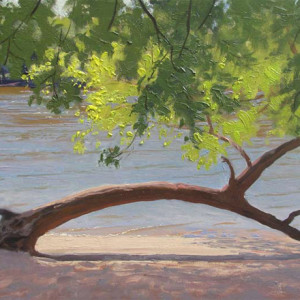 Beach, MN River by Scott Lloyd Anderson