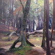 Grand Marais Woods by Scott Lloyd Anderson, 12x16 Oil