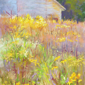 August Meadow- Gibbs Farm by Lisa Stauffer, 6x12 Pastel, Sold
