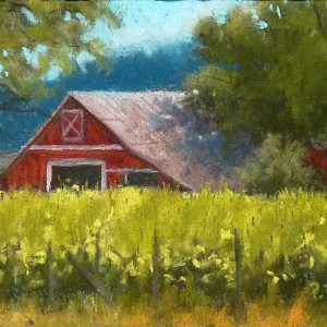 Alexander Valley Vineyards by Patricia Duncan, 7x5 Pastel