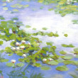 Water Lillies at Diamond Lake by CeCeile Hartleib, 12x9 Oil