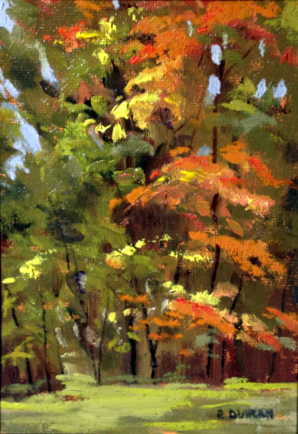 Autumn Colors 5x7 Framed