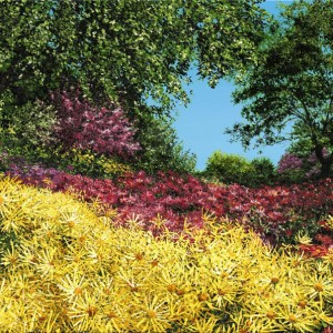 Joy of Yellow by Ashley Dull, Giclee Canvas