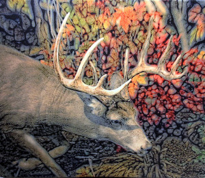 Fall Buck Canvas 20x16