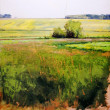 September Field, Lake Mary by Ben Bauer, 24x26 Oil