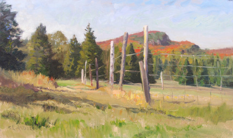 Autumn in Cook County by Scott Lloyd Anderson, 20x12 Oil