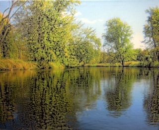 Lakeside Reflections Canvas 20x16